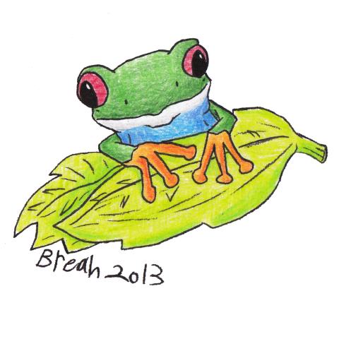 Tree Frog 03