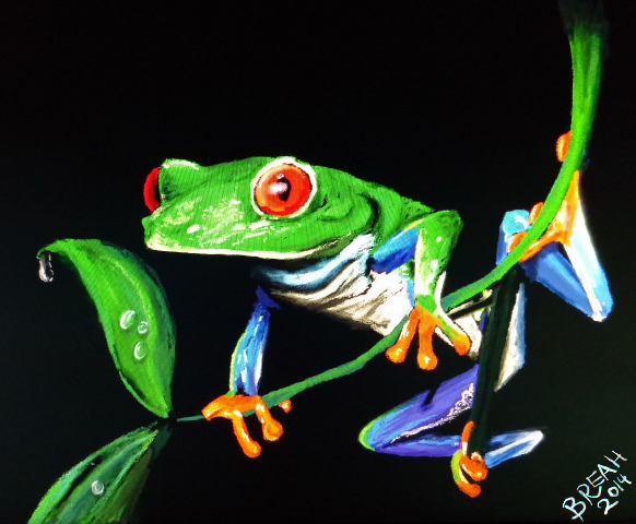 Red-Eyed Tree Frog Digital Painting